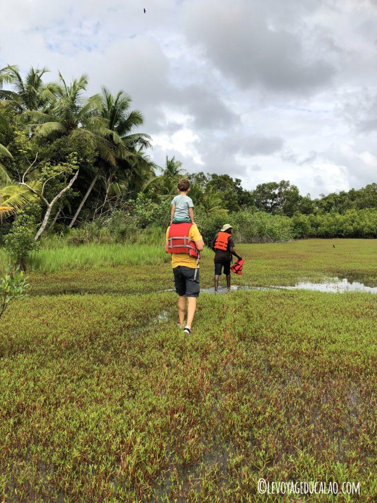 Balade île Meha Ehotilé