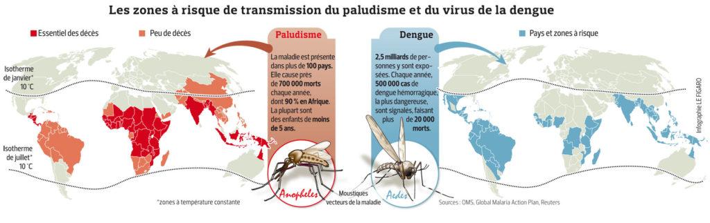 Carte Paludisme Dengue