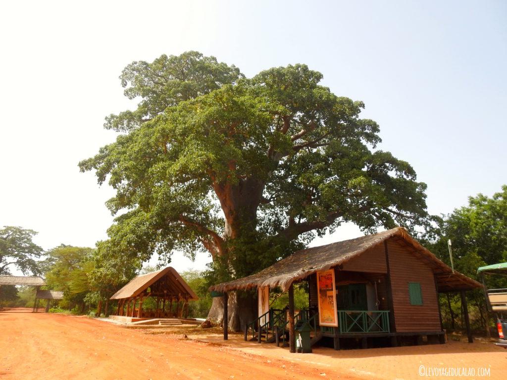 Entrée Bandia Senegal
