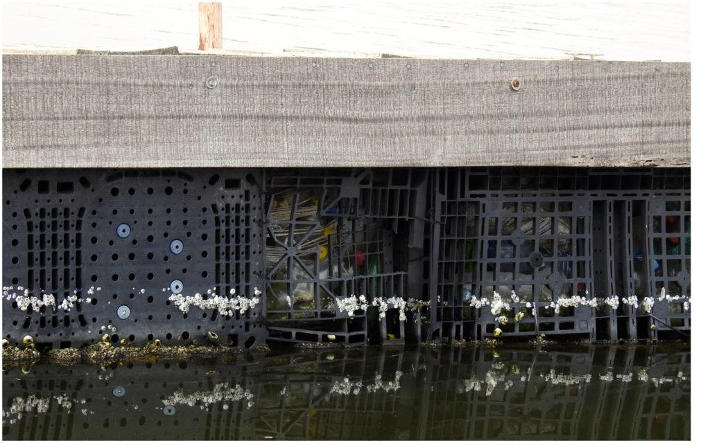 Bouteilles Ile Flottante Abidjan