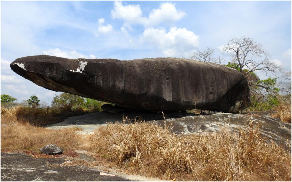 Parc Ahouakro Crocodile