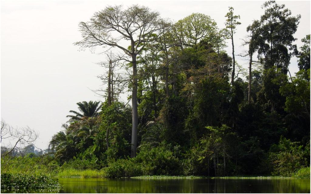 Fleuve Bandama Tiassalé
