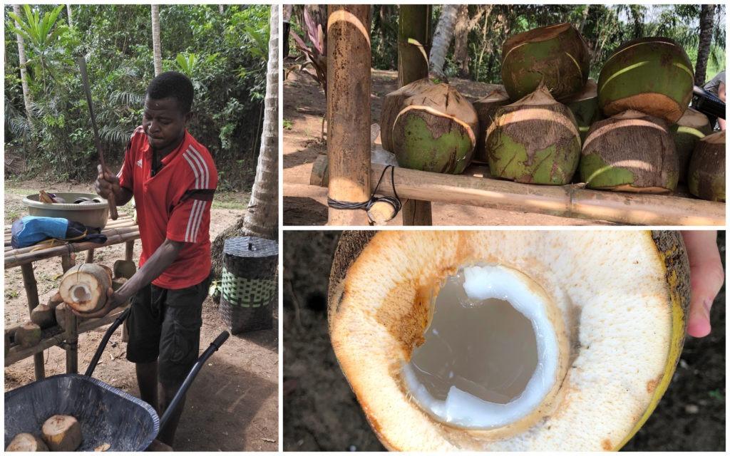 Apéro Coco Bini Abidjan