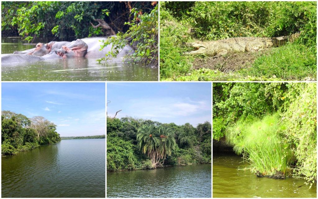Lac Mburo Ouganda