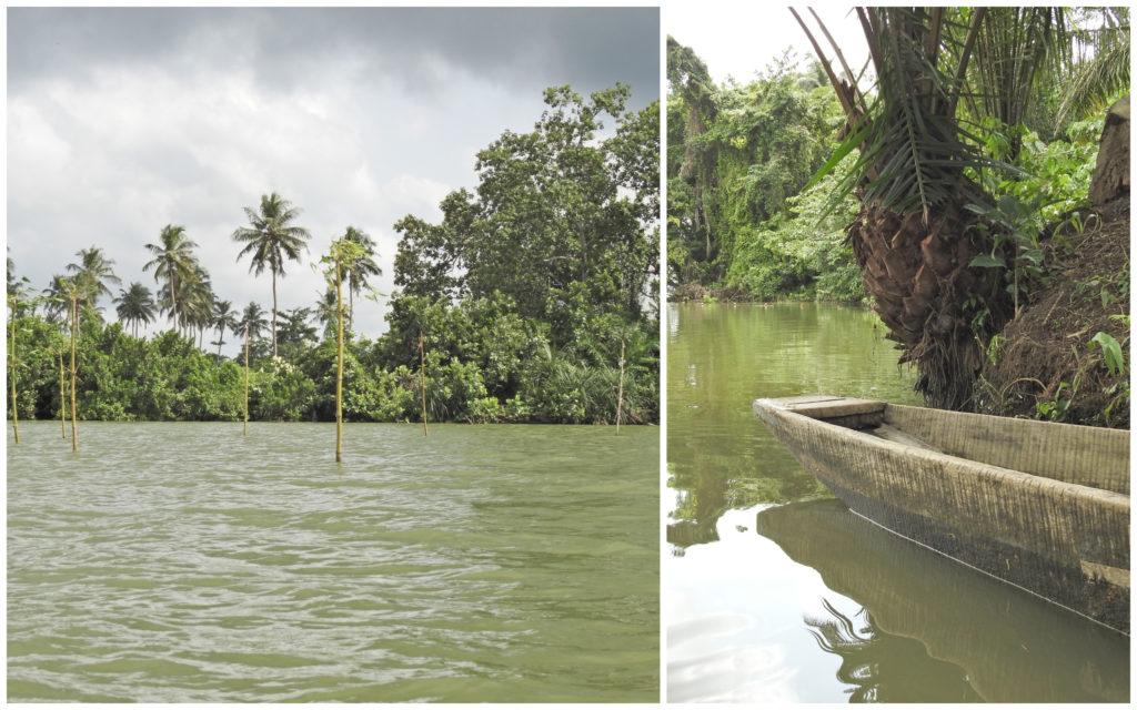 Lagune Bini Abidjan