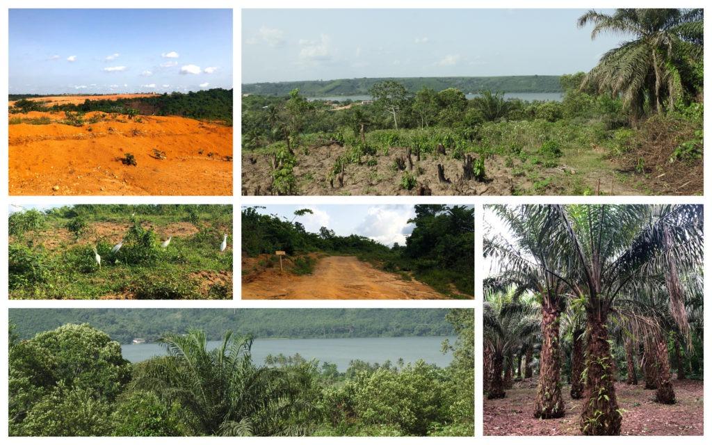 Paysage Bini Abidjan