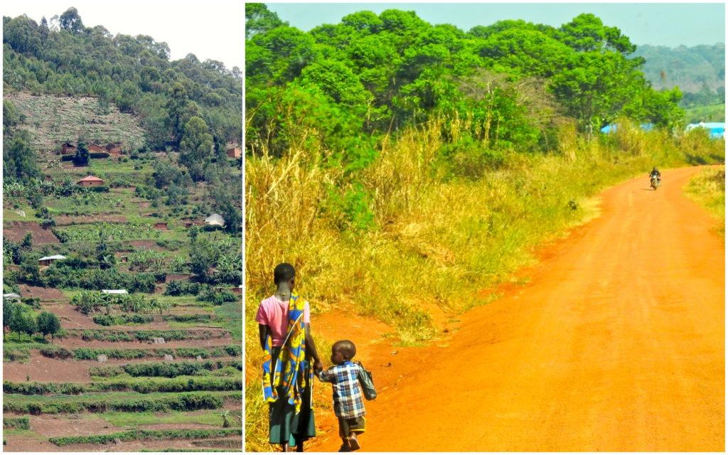 Paysages Ouganda 2