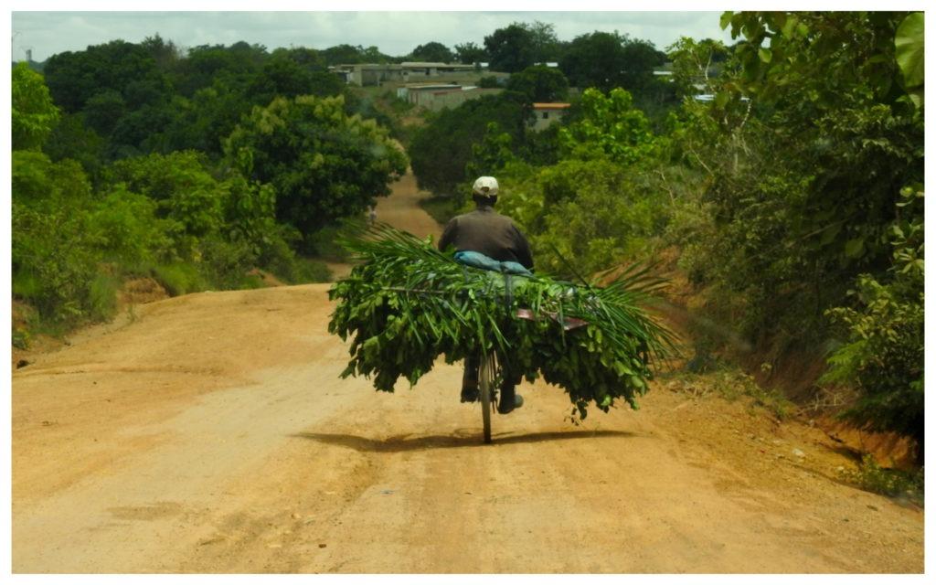 Cycliste piste Nzi Côte d'Ivoire