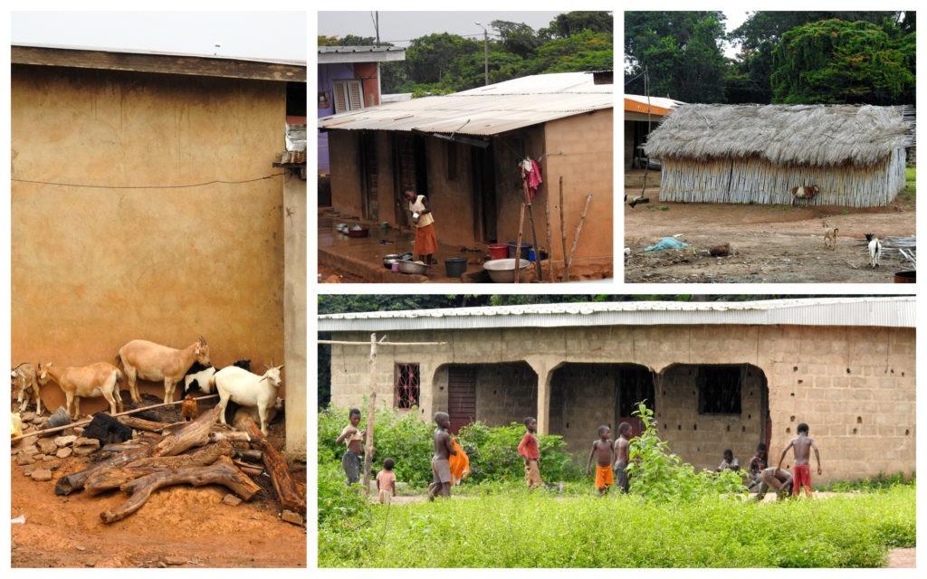 Village Tanou Sakassou Bouake