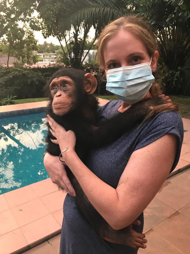Sarah et Akouba chimpanzés Akatia