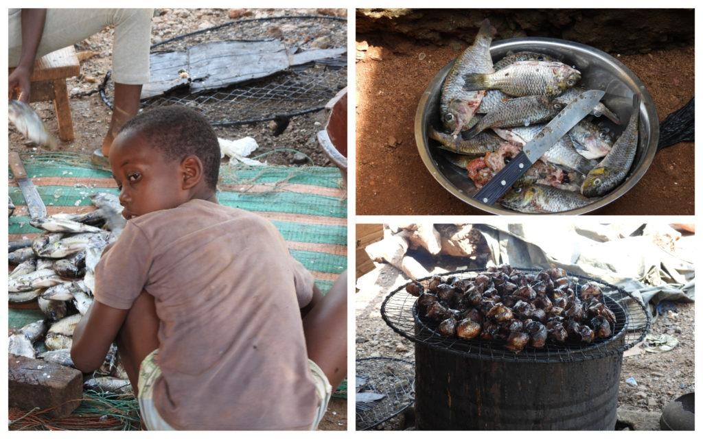 Poissons Tiagba Côte d'Ivoire